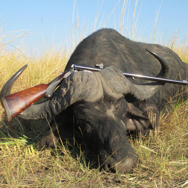 kowas-cape-buffalo-package